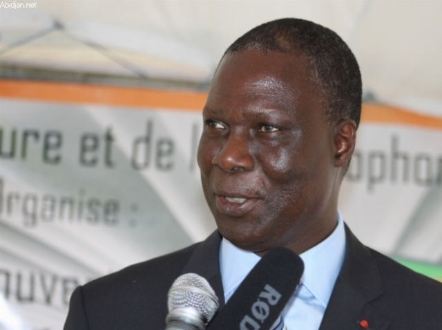 Réglementation du septième art: le cinéma ivoirien désormais régi par une loi
